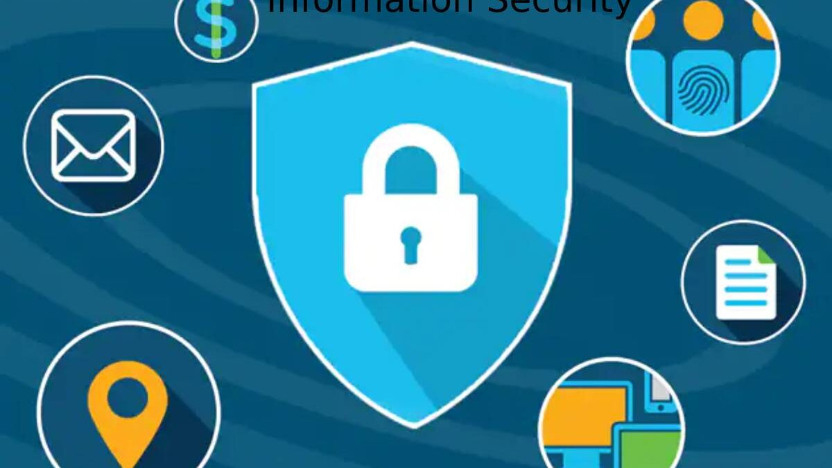 Information Security – What is information security? Definition, principles, and steps
